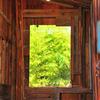 カガミの窓