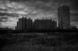 in the wasteland of tokyo