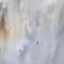 華厳の滝 燕1