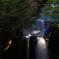 朝日 竜頭の滝