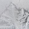 -14℃ 雪羽