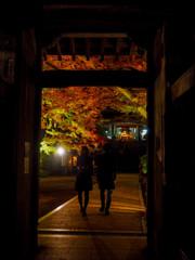 大興善寺 夜の門