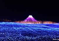 カラフル富士山