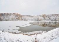 NIKON NIKON D3Sで撮影した(冬への扉)の写真(画像)
