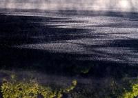 NIKON NIKON D700で撮影した(水面のときめき)の写真(画像)