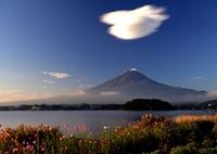 NIKON NIKON D700で撮影した(秋 日 和)の写真(画像)