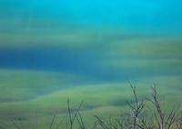 NIKON NIKON D800で撮影した(碧瑠璃の神秘)の写真(画像)