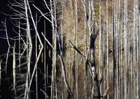 NIKON NIKON D800Eで撮影した(剣林地獄)の写真(画像)