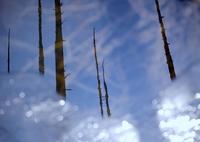 NIKON NIKON D800で撮影した(殺 生 湖)の写真(画像)