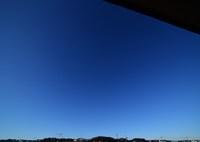 NIKON NIKON D750で撮影した(見上げれば蒼穹)の写真(画像)