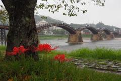雨中五連橋
