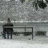 堀で休む老人と烏