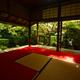 妙心寺桂春院・侘の庭8