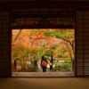 宝筐院の紅葉4