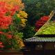 鮎の宿・つたやの紅葉