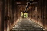 早朝の長谷寺の登廊