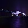 光の恐竜橋