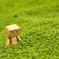 ダンボーと緑の絨毯