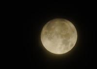 SONY ILCA-77M2で撮影した(薄曇りの月 )の写真(画像)