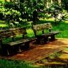 於 野川公園