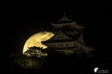 岐阜城と立待月Ⅱ