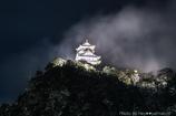 岐阜城に冬の華