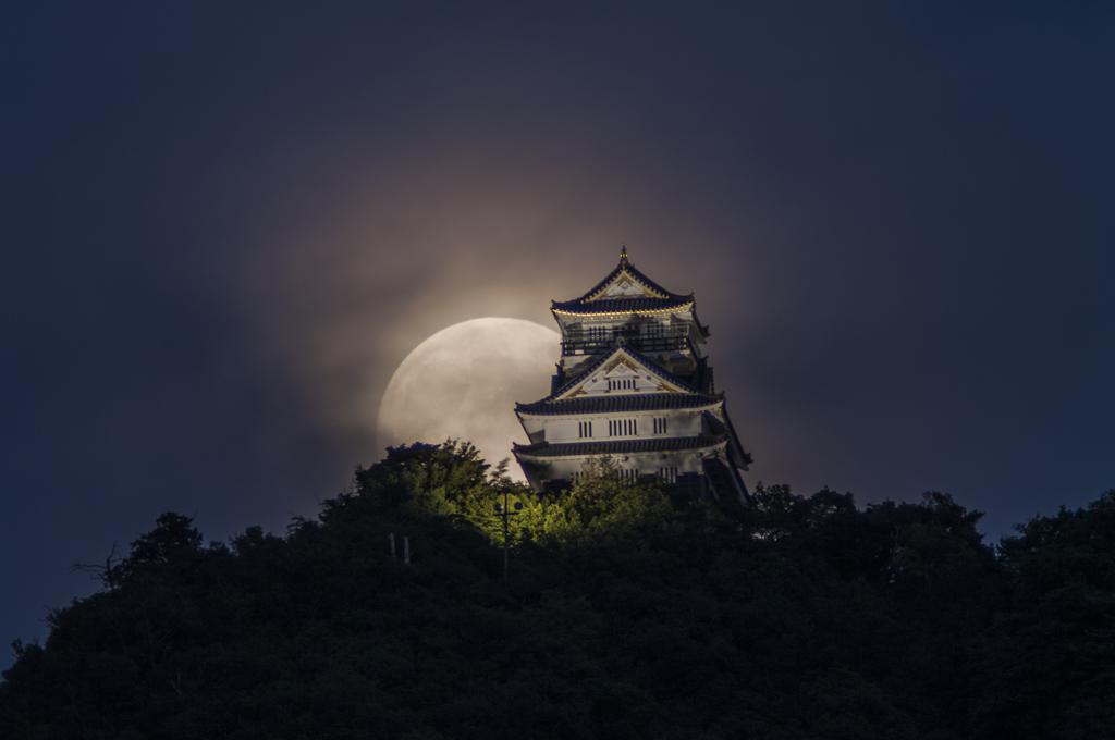 「中秋の名月(1)」