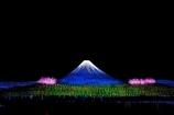 Cherry and Blue Light Fuji
