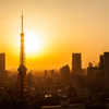Sunset Tower of Tokyo