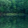 芹沼池の夜明け