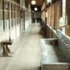 廃校の廊下
