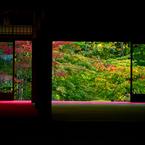 NIKON NIKON D800で撮影した(京都の虹)の写真(画像)
