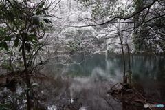 厳寒の丸池様-1