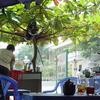 カフェで一休み