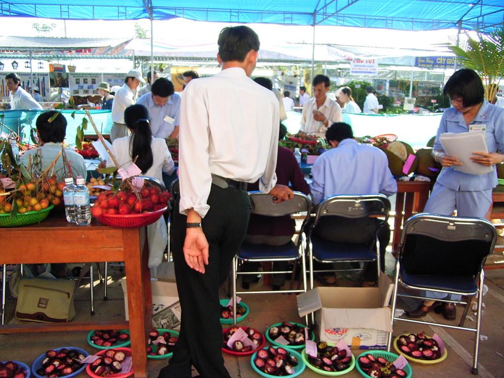 Ben Tre 省で行われた果物品評会