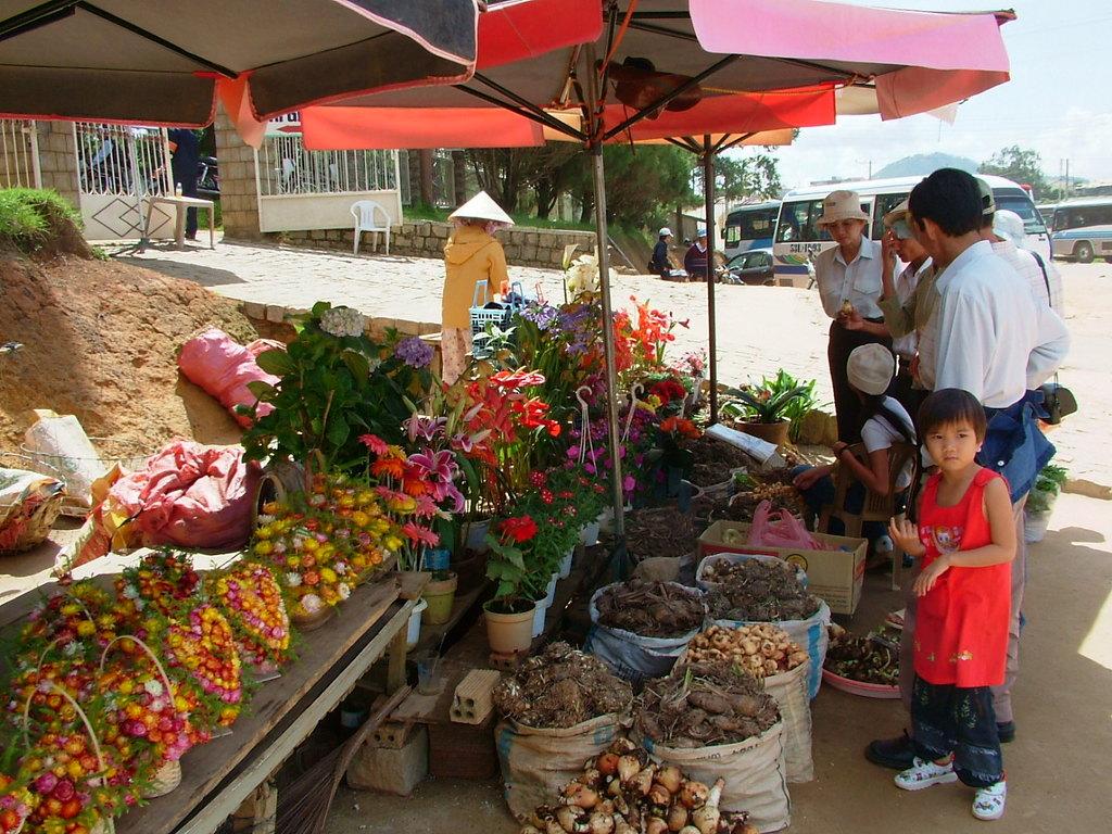 公園前の駐車場の売店にて(Đà Lạt)