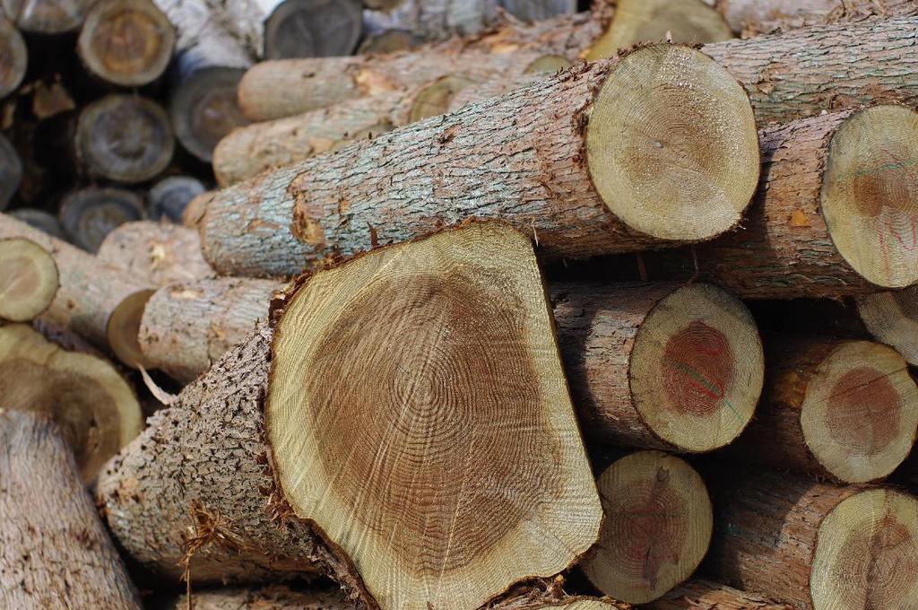 木の香りが好きです