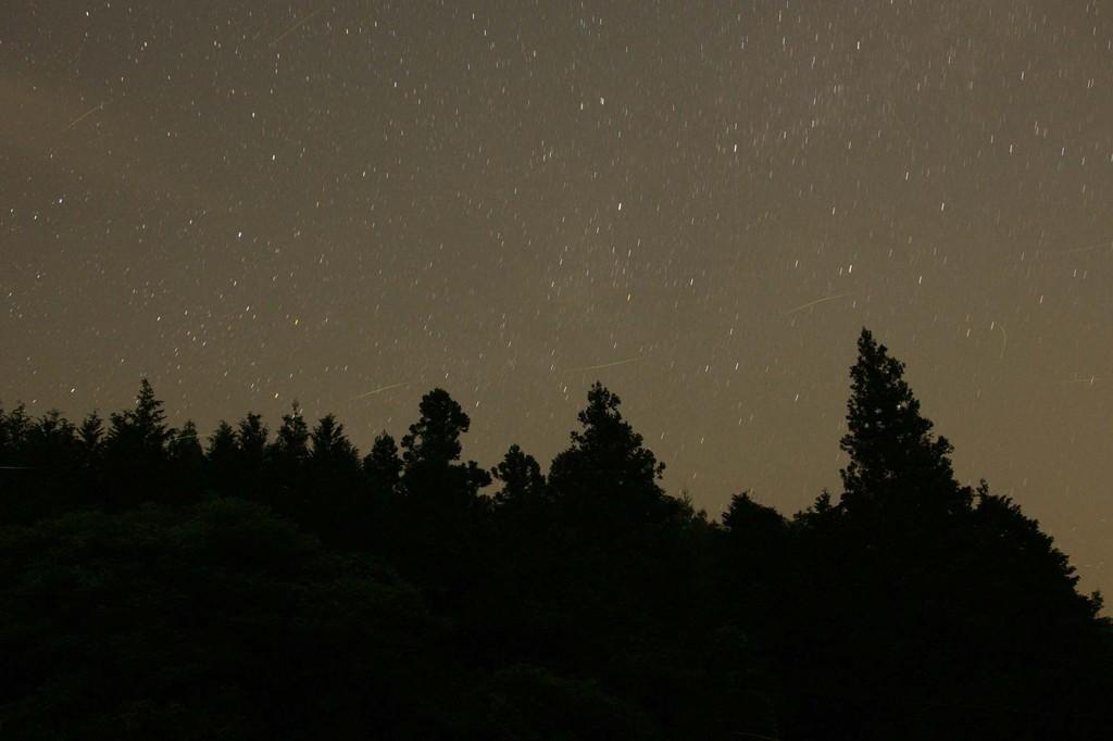 星空とホタル