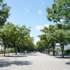 代々木公園への道w
