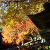 箸蔵寺の秋