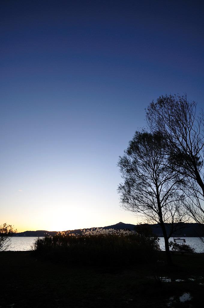 琵琶湖とススキとシルエット