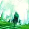 竹林の中に見た幻