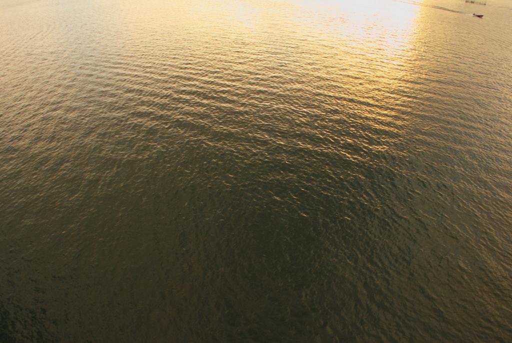 黄金の水面
