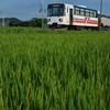 紀州鉄道の夏②