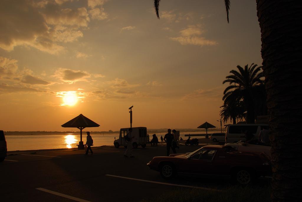 夕日とロータス