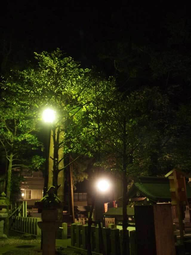 静かな夜。