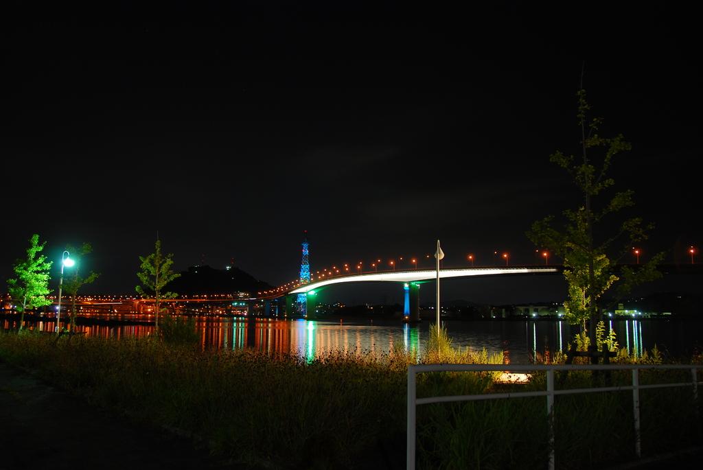 近くの夜景