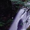 春の赤目滝