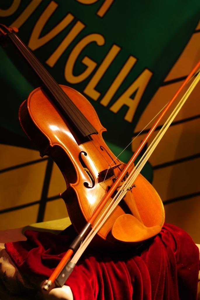 TDS バイオリン