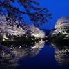 はじめての夜桜に感動